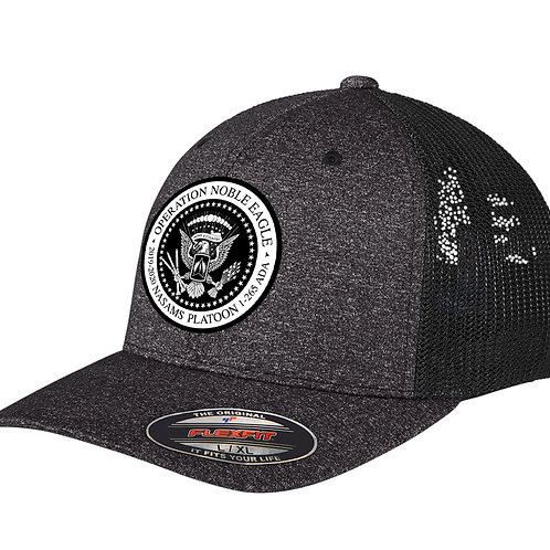 FLEXFIT NASAMS Hat w/ PATCH