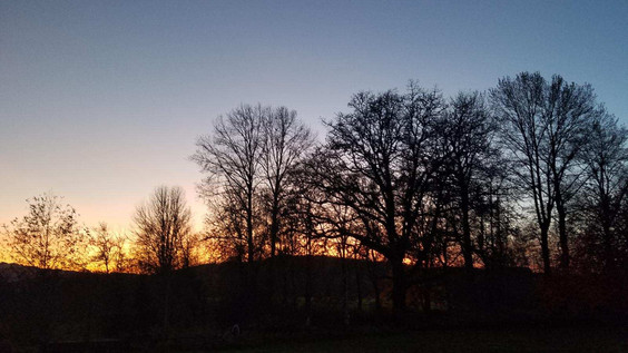 20191023_dusk.jpg