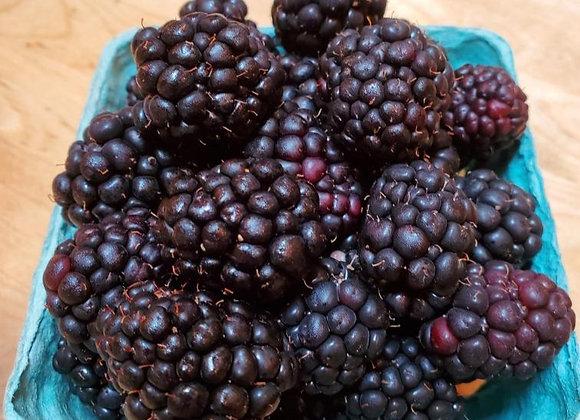 Organic Blackberries