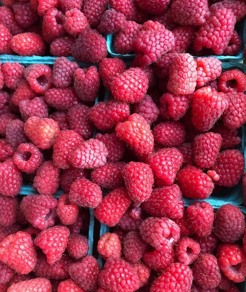 First harvest of Raspberries 2020