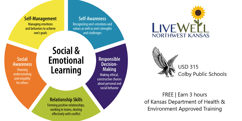 Approaches to Social Emotional Learning