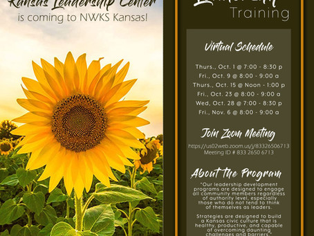 FREE Virtual Leadership Training Available