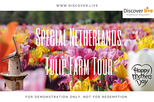 Mother's Day Gift Certificate - Netherlands Tulip Farm