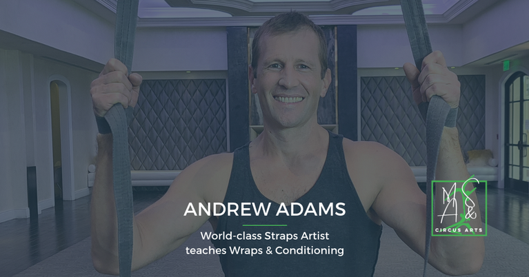 Straps Wraps and Conditioning online