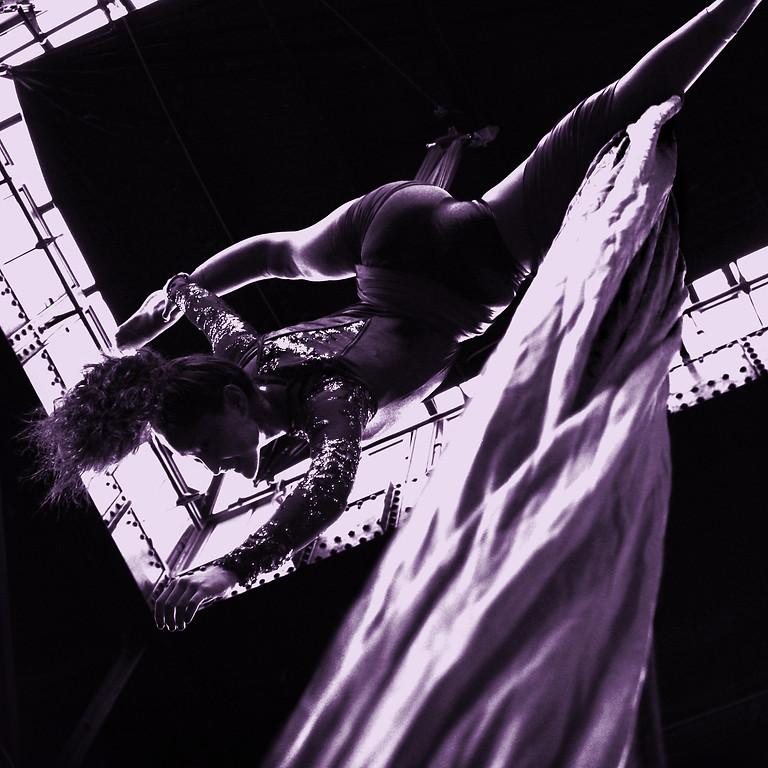 Circus Arts Summer Camp Chicago