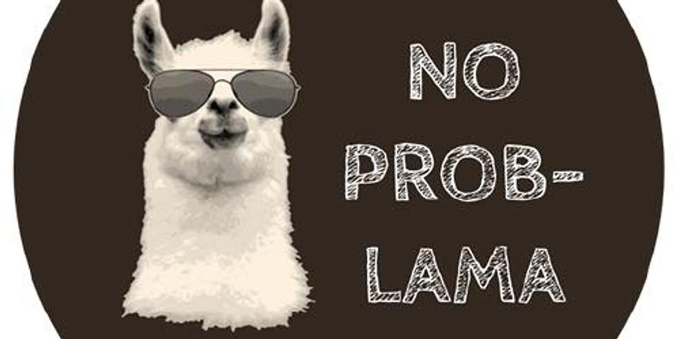 Hounted Llamas
