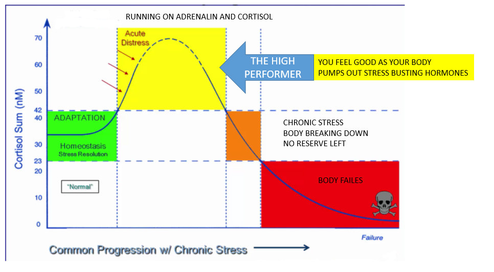 The effects of high performance on your body