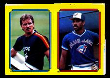 1988 Topps/O-Pee-Chee Sticker Backs #22 Gary Carter