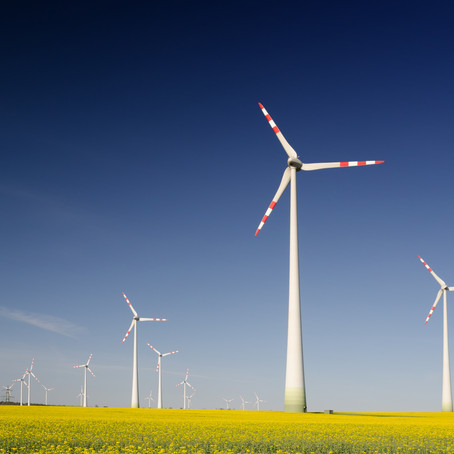 How We Define Sustainable