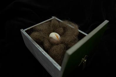 Egg in Hiry Nest-18423_all black backgro