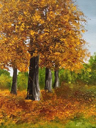 detail of Autumn colours.jpg