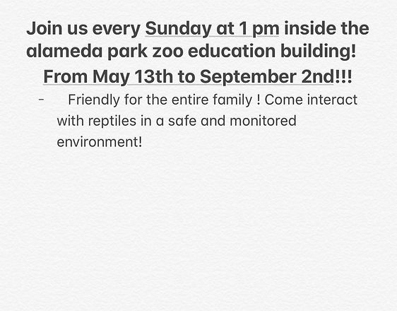 summer zoo presentation .jpg