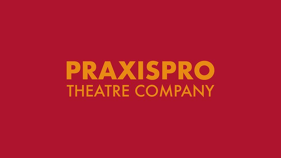 PraxisPro_edited.jpg