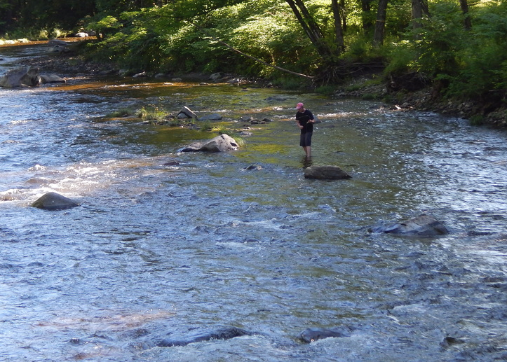Cold River Fly Fishing