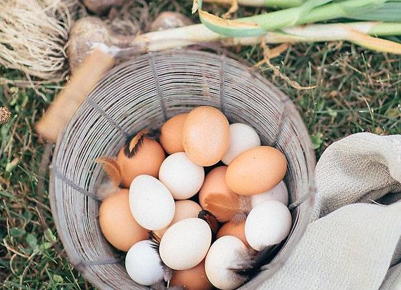 Pasture Raised 1/2 Dozen Eggs- Shipping Friendly