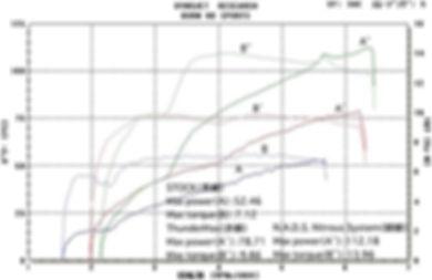 '09 XL1200N グラフ