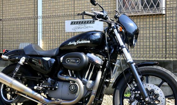 '09 XL1200N No.03