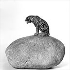 Image of Tiger and stone