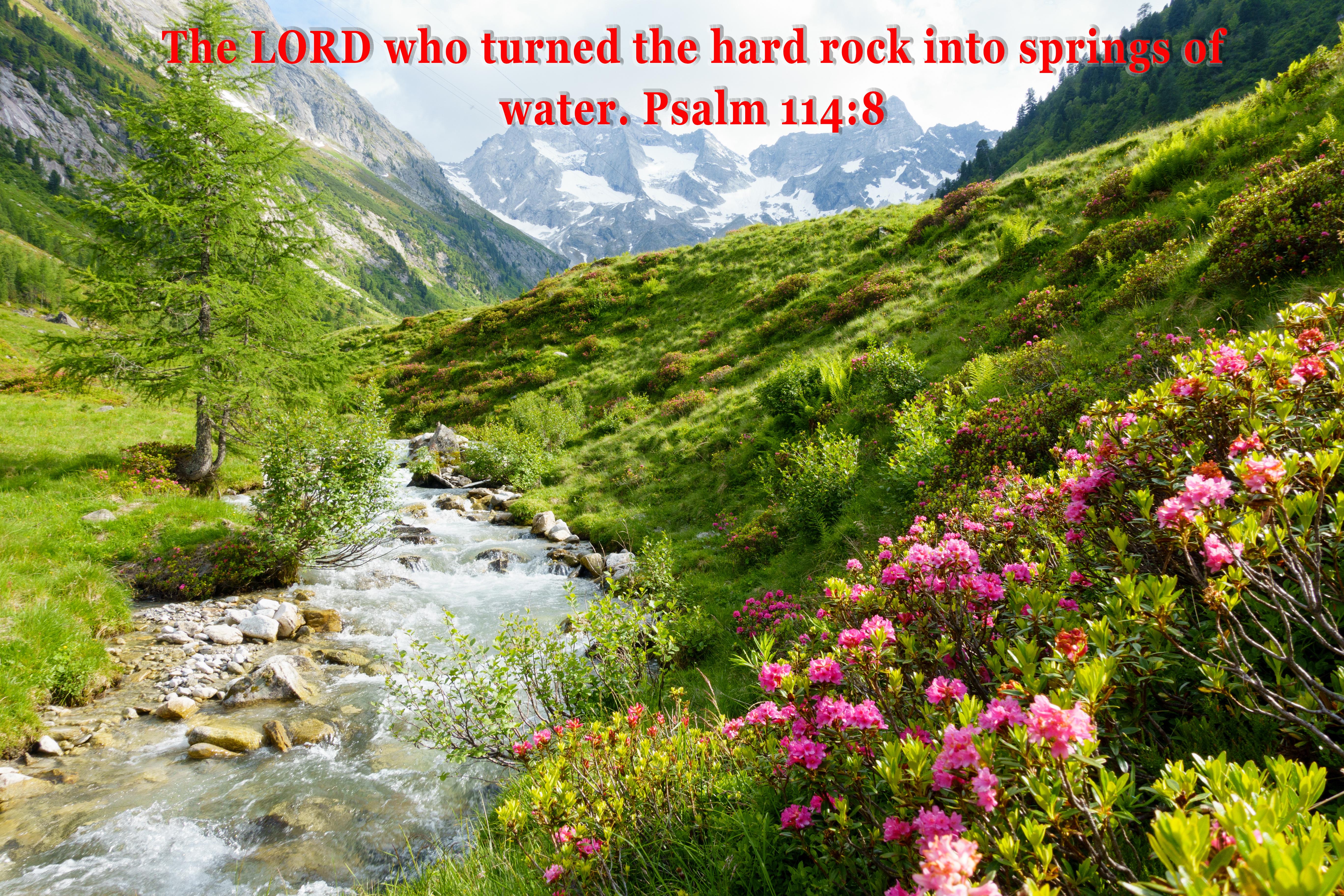 Psalm 114-8