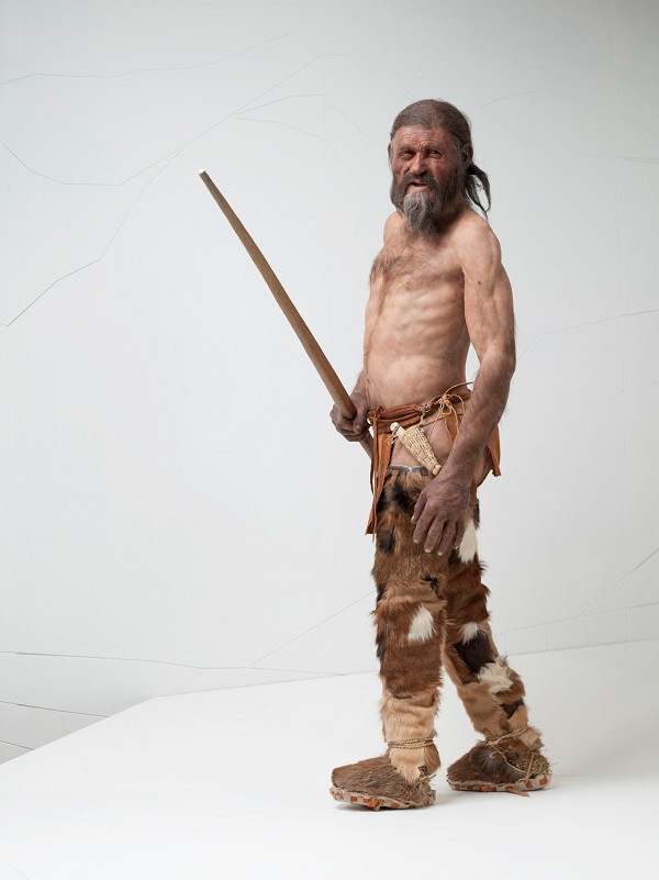 A reconstruction of Otzi, who had Birch Polypore and Horse Hoof Fungus on his person