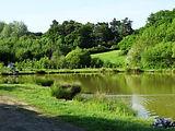 Staffordshire foraging course venue