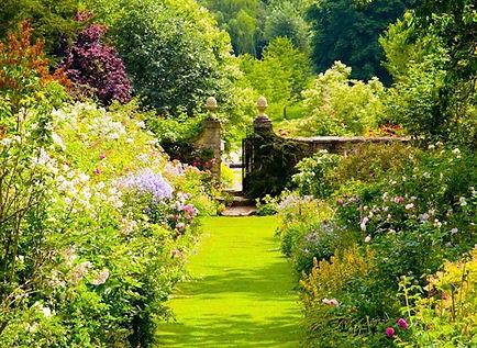 Cerney House Gardens Foraging Course