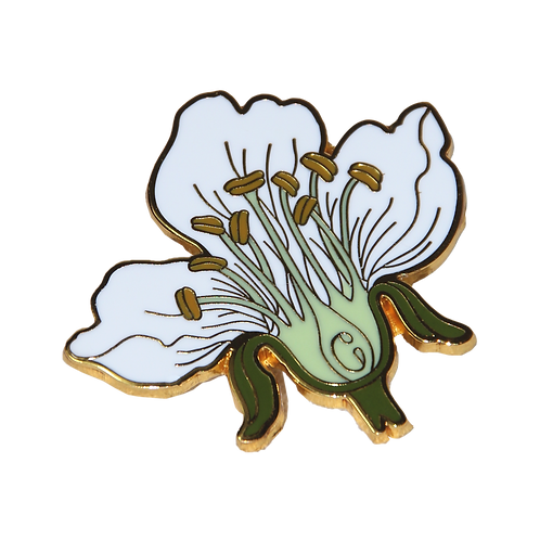 Cross Section Cherry Blossom Pin