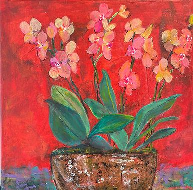 Precious_Orchids.jpg