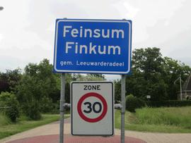 dorpsvisie Feinsum