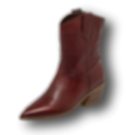Stiefelette.png