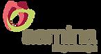 aamina Logo.png
