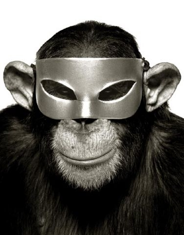 albert-watson-icons-monkey-with-mask