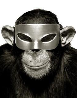 albert-watson-icons-monkey-with-mask