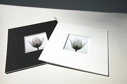 Espace Soardi - Encadrement sur mesure - Cadre photo - Cadre deco - réalisation de cadre - Passe-partout musée