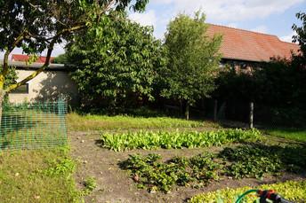 6 - Garten.JPG