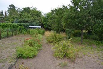 05-Garten.jpg