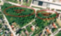 Luftbild Leitzkau