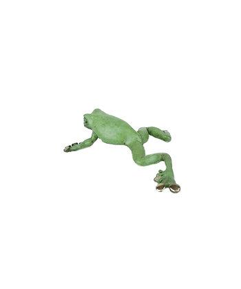 Frog – Dainty Tree