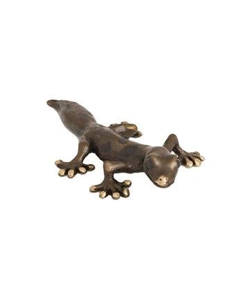 Gecko  - Large