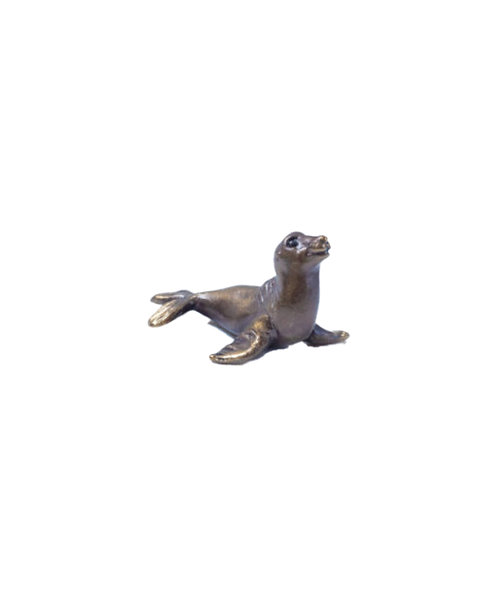 Australian Fur Seal – Sea Lion Pip