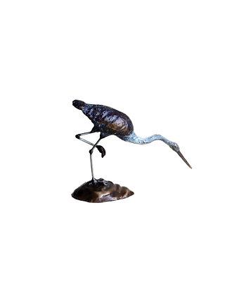 Heron Pacific - Head Bent between Legs