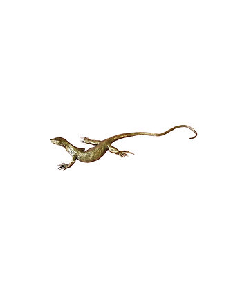 Lizard – Juvenile Monitor – Captain Swagger Edition 99