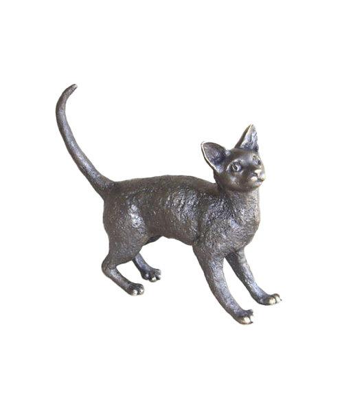 Cat - Large