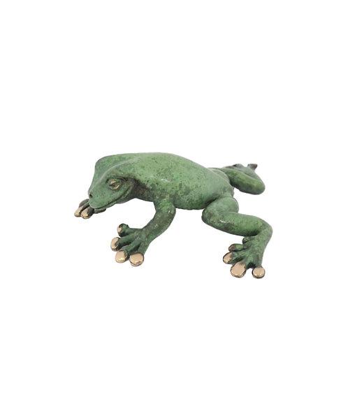 Frog  - Tree