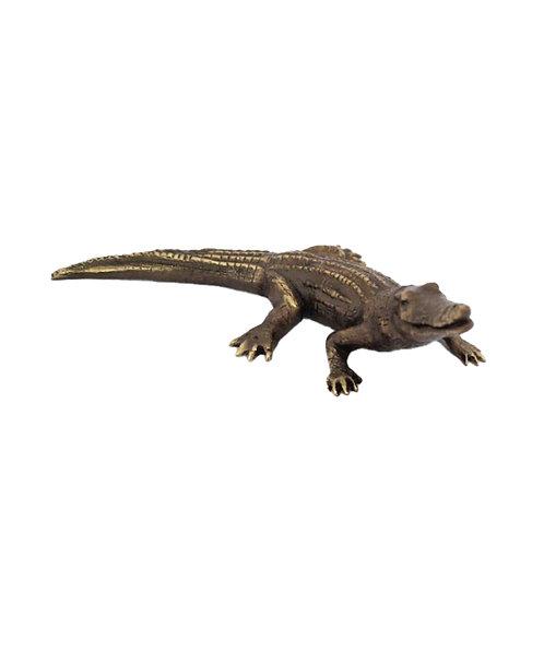 Crocodile Small Salty