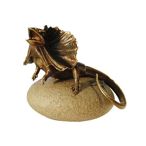 Bronze Frilled Lizard