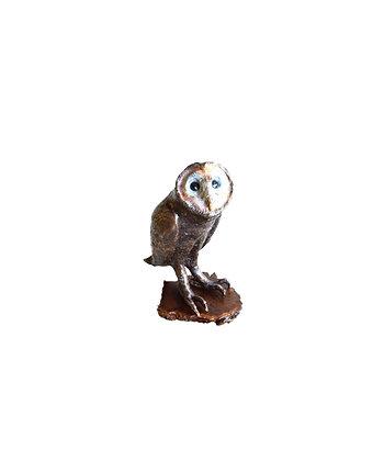 Owl - Australian Masked Large - Edition 50