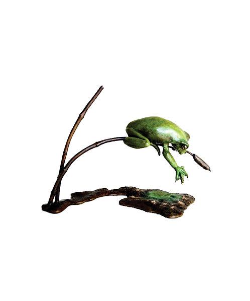 """Frog on Pond - """"Finding Facebook"""""""