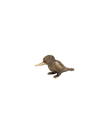 Kookaburra – Sitting
