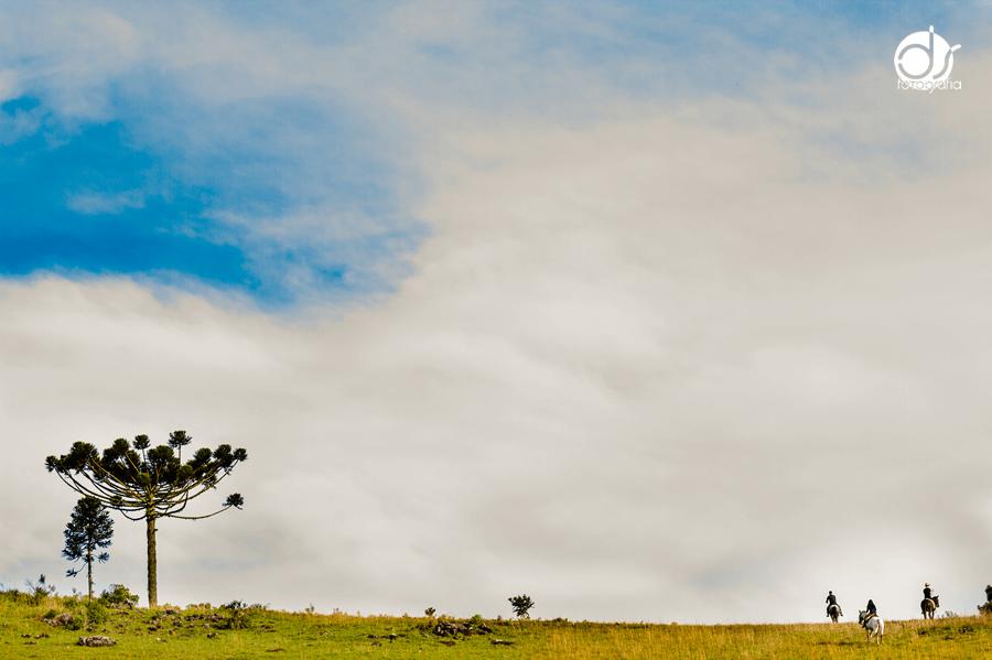 Fotógrafo Caxias do Sul - Fotografia - Daniel Stochero - Foto